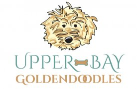 Upper Bay Goldendoodles Logo